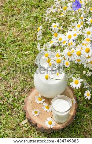 Milk jug and glass on the grass with chamomiles - stock photo