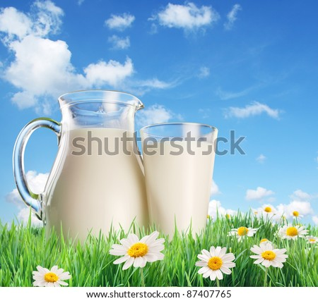 Milk jug and glass on the grass with chamomiles. On a background of the summer sky with clouds. - stock photo