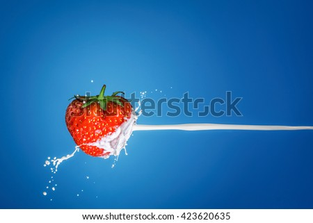 Milk splash with strawberries isolated on a blue background. - stock photo