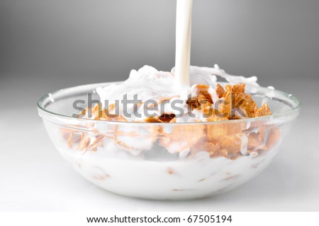 milk stream flowing to the bowl with corn flakes - stock photo