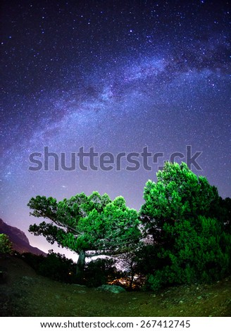 Milky Way. Beautiful summer night sky with stars and green trees. Crimea mountains - stock photo