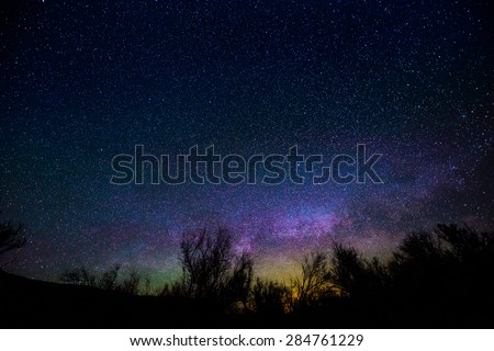 Milkyway rising over the trees - Night Landscapes - stock photo