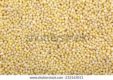 Millet as background