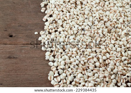 Millet the organic grain food arranges as background