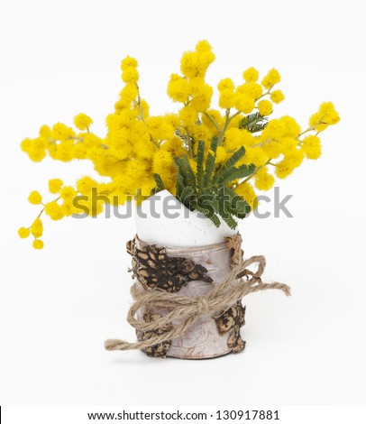 mimosa flowers in decorated egg shell - stock photo