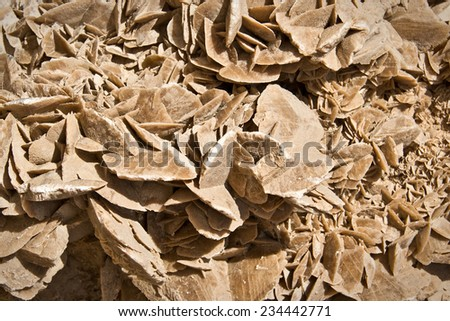 Mineral stone of the desert (sand rose) close up background