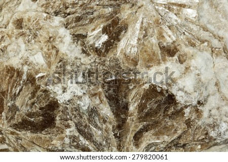 Mineral white mica background - stock photo