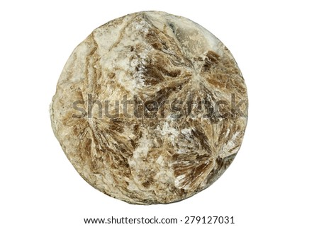 Mineral white mica on a white background - stock photo