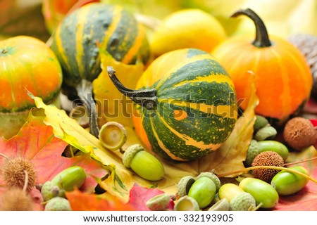 Mini decorative pumpkins with acorns on autumn leaves - stock photo