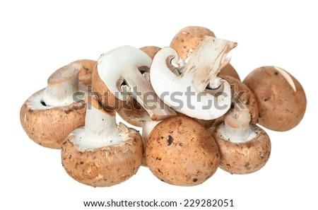 mini portabella mushroom isolated on white background - stock photo