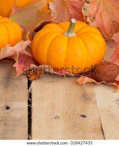 Mini pumpkin and colorful fall leaves on wood surface - stock photo