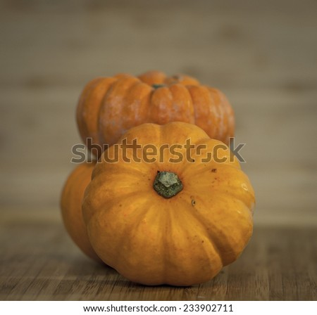 Mini pumpkins - stock photo