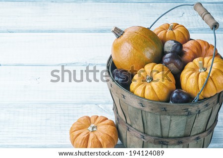 Mini Pumpkins and Chestnuts in Harvest Basket on Rustic White or Gray Board Background with room or space for copy, text.  Horizontal with vintage instagram processing. - stock photo