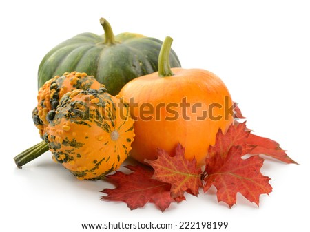 Mini Pumpkins Isolated on a White Background - stock photo