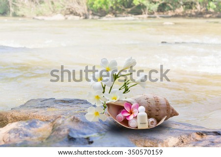 Mini set of bubble bath and shower gel decorated in sea conch shell with flower put on the rock and waterfall background - stock photo