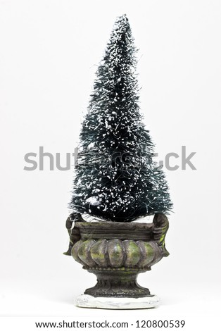 Miniature Christmas Tree in a pot - stock photo