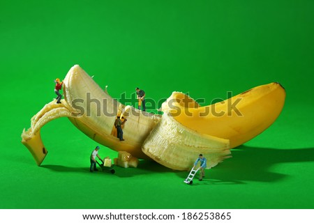 Miniature Construction Workers in Conceptual Food Imagery With Banana - stock photo