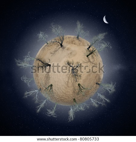 Miniature desert planet with leafless dry trees, night-time - stock photo