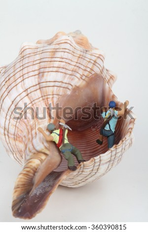 Miniature of speleologist exploring the cavity of a shell