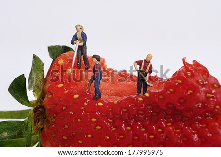 Miniature people with strawberry - stock photo
