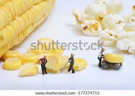 Miniature peoples at work with corn and popcorn - stock photo