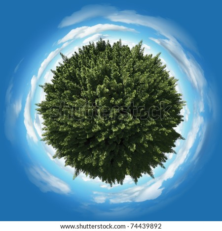 Miniature planet with thick pine wood vegetation and clouds on blue sky - stock photo