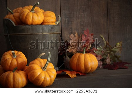 Miniature pumpkins on wooden table - stock photo
