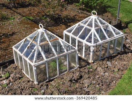 Miniature Victorian Greenhouses in a Vegetable Garden in  the Rural Village of Arlington in North Devon, England, UK. - stock photo