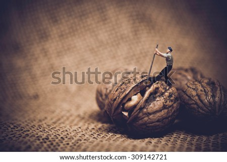 Miniature worker with a crowbar trying to open a walnut. Color tone tuned macro photo - stock photo