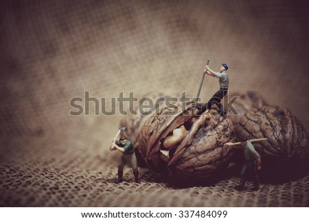 Miniature worker with a crowbar trying to open a walnut. Color tone tuned macro photo. - stock photo