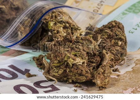 Minigrip, marijuana and some banknotes   - stock photo