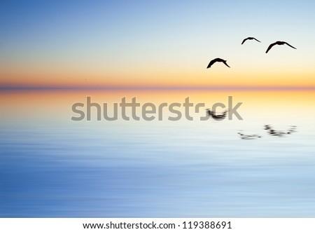 Minimalist Lake - stock photo