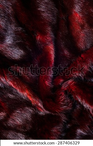Mink fur animal cherry blossoms. a small, semiaquatic, stoatlike carnivore native to North America and Eurasia. The American mink is widely farmed for its fur, - stock photo