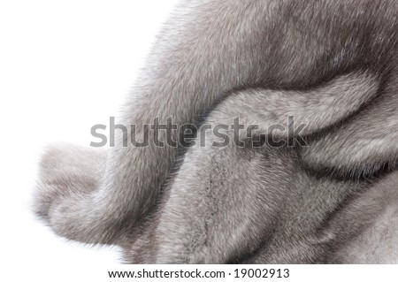 Mink Fur over white - stock photo