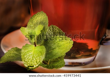 Mint brunch with cup of tea on the table mint cup tea mint cup tea mint cup tea mint cup tea mint cup tea mint cup tea mint cup tea mint cup tea mint cup tea mint cup tea mint cup tea mint cup tea - stock photo