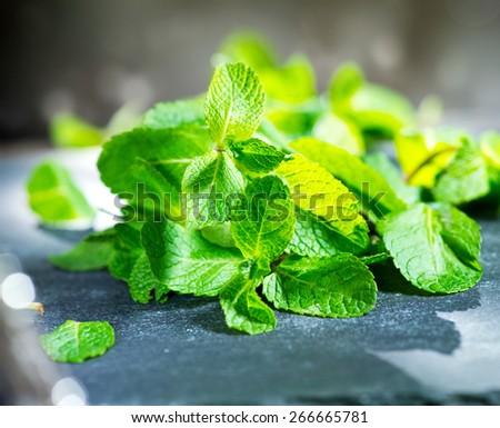 Mint. Fresh mint on a table closeup - stock photo