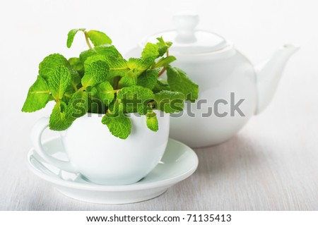 Mint in a white cup on the table