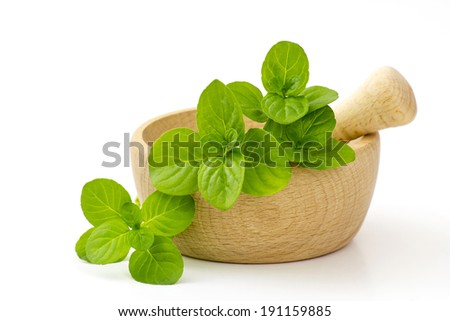 mint leaves in a mortar - stock photo