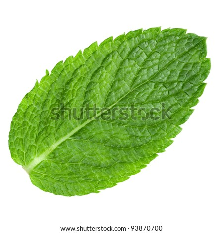 mint leaves isolated on white background. Studio macro