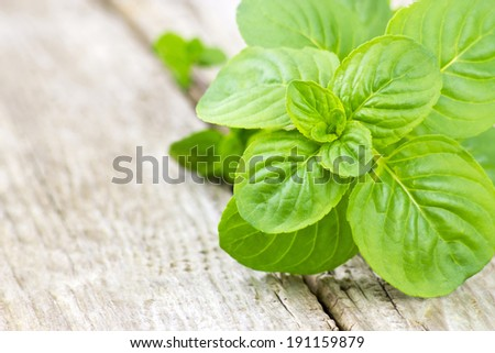 mint leaves on wooden background - stock photo