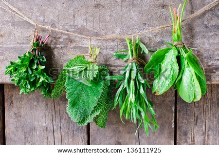 Mint, sage, tarragon and spinach on a wooden background, selective focus - stock photo