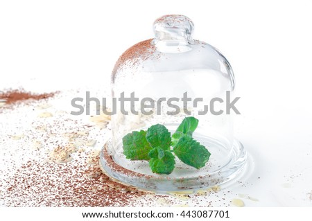 mint sprigs in clear glass - stock photo