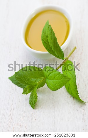 mint with olive oil - stock photo