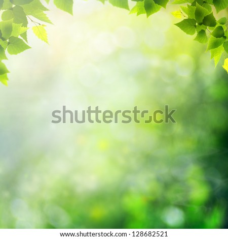 Miracle day on the summer meadow. Abstract natural backgrounds - stock photo