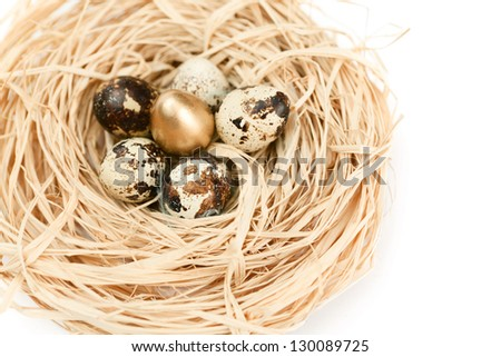 Miraculous nest with golden and natural quail eggs, isolated on white background