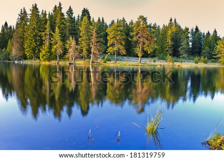mirror beauty - stock photo