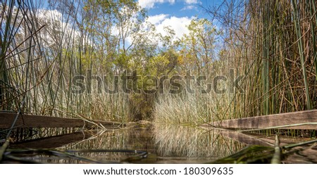 Mirror bridge - Lake Birrabeen at Fraser island in Australia - stock photo