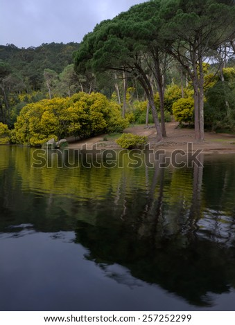 mirrored trees Blue Lagoon, natural park Sintra-Cascais, Portugal - stock photo