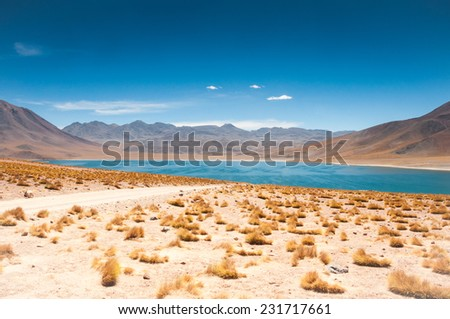 Miscanti lagoon in San Pedro de Atacama, Chile - stock photo