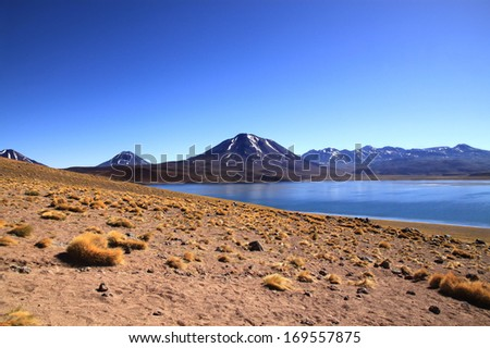Miscanti Lake (Laguna Miscanti), Chile It is a brackish water lake located in the altiplano of the Antofagasta Region, in northern Chile. Miniques volcano and Cerro Miscanti tower over this lake.  - stock photo
